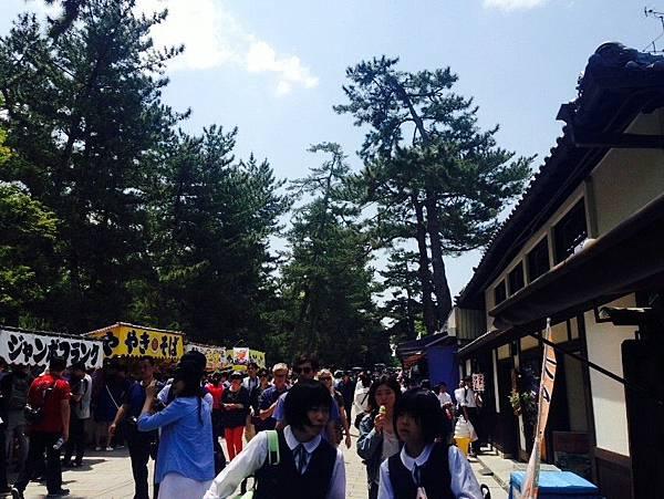 奈良車車之旅day5_8089.jpg