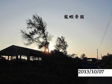 照片 681