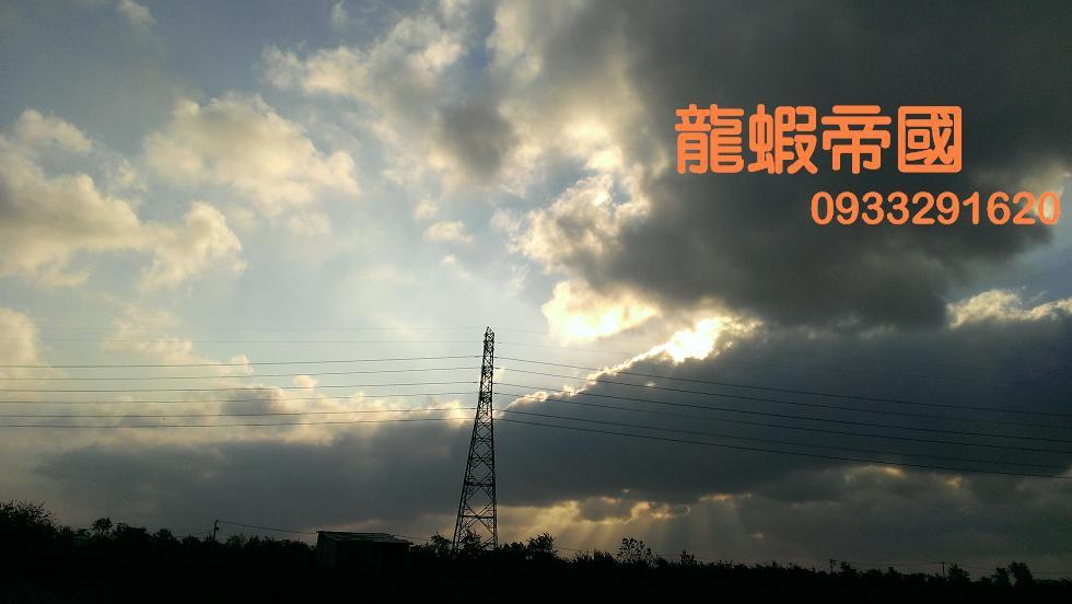 IMAG7515.jpg
