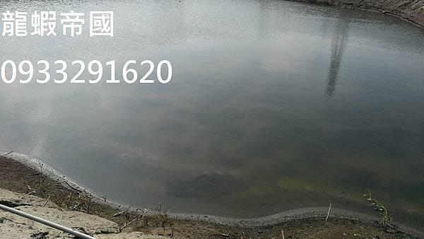IMAG8688