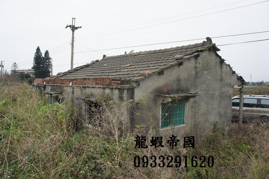 DSC07948