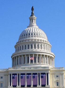 美國密切關注薄案「強摘器官」密集出現政府報告中