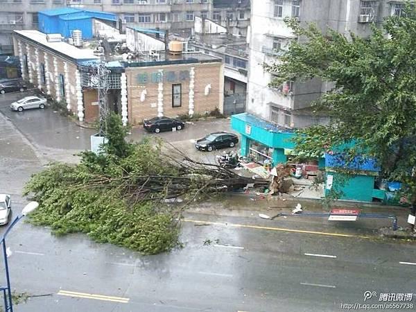 強颱風「天兔」登陸廣東汕尾 已致21死