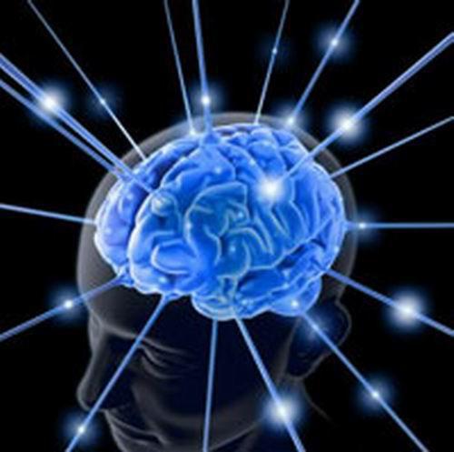 研究:音樂家的大腦「更敏銳」