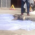 9月8日郴州啟明學校二年級學生7歲的何宇琦放學路上被擄虐殺,後在附近公廁的化糞池發現屍體,家屬說小孩頭破裂,頭皮被剝,內臟腐爛模糊不全。(網絡圖片)