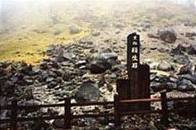 日本櫪木縣那須鎮的山上,有一種毒石,不論是昆蟲還是飛鳥,一旦接觸到這種石頭便很快就會死亡。這種能殺死生物的毒石,當地人把它叫做「殺生石」。這種毒石多在火山口附近,由於被火山噴出的亞硫酸和硫化氫氣體浸熏,從而有了毒性。