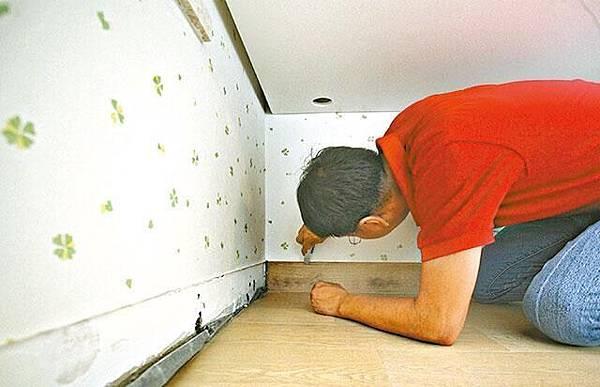 單位房間內的牆腳位置嚴重變黑,驗樓師詹濟南割開木板發現有發霉迹象。周子惇攝