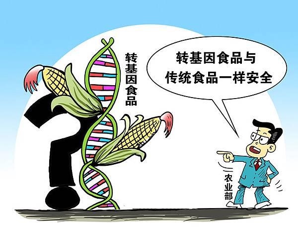 中共農業部網站發佈消息稱,轉基因食品與傳統食品一樣安全,遭民眾強烈反對,並稱農業部是造「官謠」。(大紀元資料室)