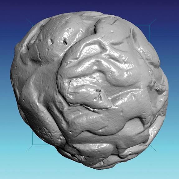 從球的外形也能分析得到許多數據(Credit: Courtesy Oriental Institute of the University of Chicago