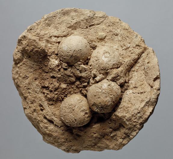 20世紀60年代中後期在伊朗西部Choga Mish現場挖掘20多個粘土球。(Credit: Courtesy Oriental Institute of th