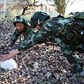 在《解放軍報》報導中,士兵以家兔充當野兔,來展示軍力。(網絡圖片)