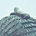 古人員根據此前在二號坑出土過的軍用裝備文物推斷,該陪葬坑很可能是秦始皇帝陵的大型「軍備庫」。專家估計,此次試挖的陪葬坑尚埋有逾1,000件石質鎧甲。