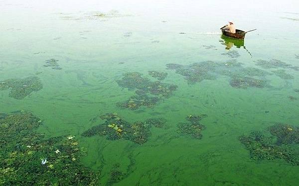 大陸這樣被嚴重污染的這樣的河水越來越多。(網絡圖片)