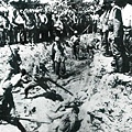 近日,網絡上傳出一張30年前被中共視為絕密的照片,照片顯示的是日軍侵華時的南京大屠殺事件。(網絡圖片)