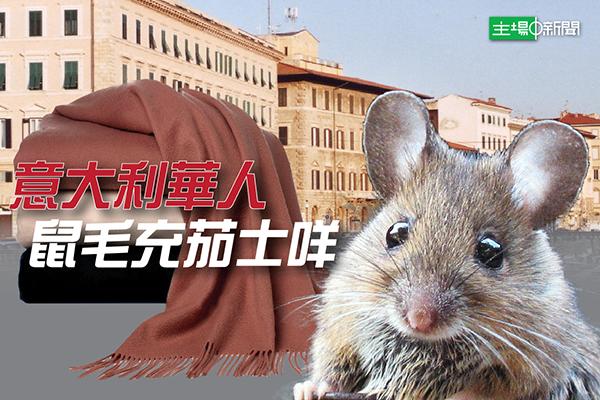鼠毛冒充羊絨 意警方逮捕14名華人