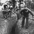 圖為,國軍在挖戰壕。(網絡圖片)