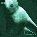 日本流傳南極洲海洋底下生活著Ningen生物。(網絡圖片)