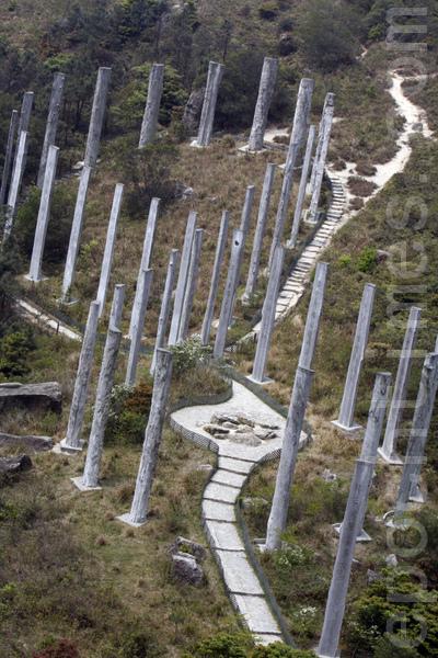 從遠處更高的山坡,可以看到心經簡林的全景,8字形和蛇形清晰可見。(大紀元)