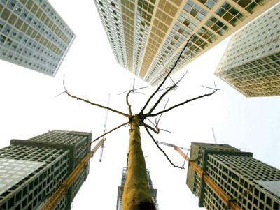 房地產領域一直是中國經濟增長的支柱以及泡沫擔憂的越來越大的來源。近期樓市面臨崩盤危機,引國際關注。(Getty   Images)