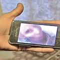 羅馬尼亞女子米海依(Gina Mihai)聲稱,她已過世的祖母傳手機自拍照給她,要求她祭拜。(網路圖片) (記者陳俊村編譯報導)