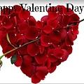 valentine day 情人節
