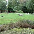 一項研究表明,約在4萬年前的尼安德特人曾食用含有類似「阿司匹林」和抗生素的樹皮和植物。圖為尼安德特人被發現的一處地方。(Wiki commons)