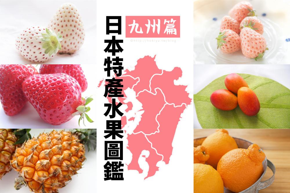 水果圖鑑九州.jpg