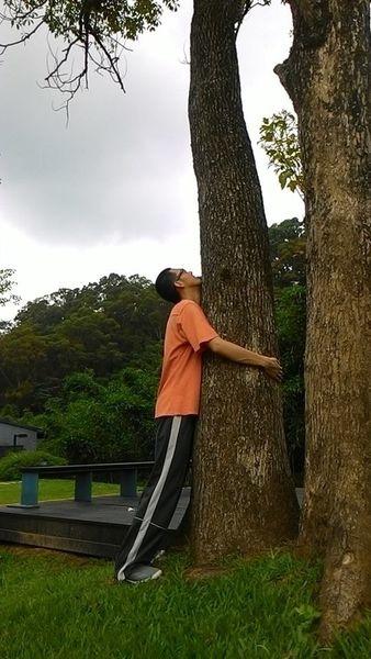 朋友忙著在軍中報數,我也忙著在公園裡抱樹。