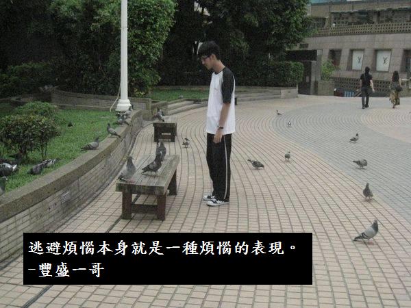 這是豐盛一鴿傳授給我的道理