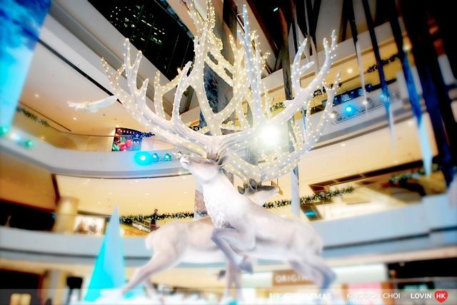 香港聖誕節2012_05