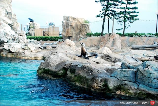 海洋公園_103