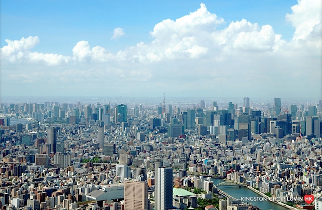 Tower04imgp1326.jpg