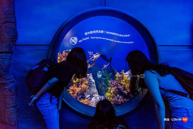 海洋公園2019_3海洋館_7.jpg