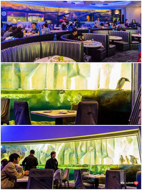 海洋公園2019_7冰極餐廳_2.jpg
