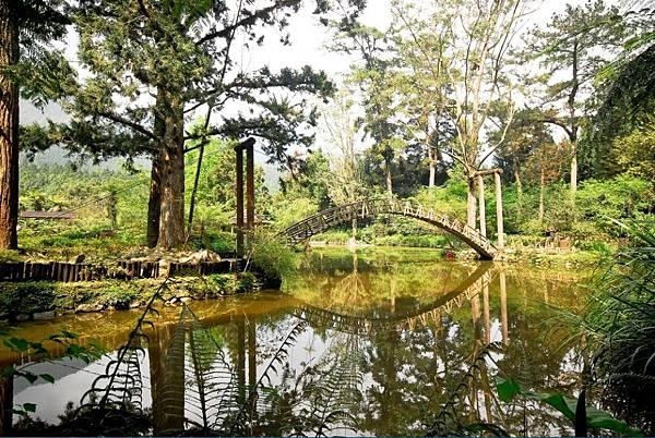 溪頭森林遊樂區2