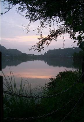 南投賞螢景點2