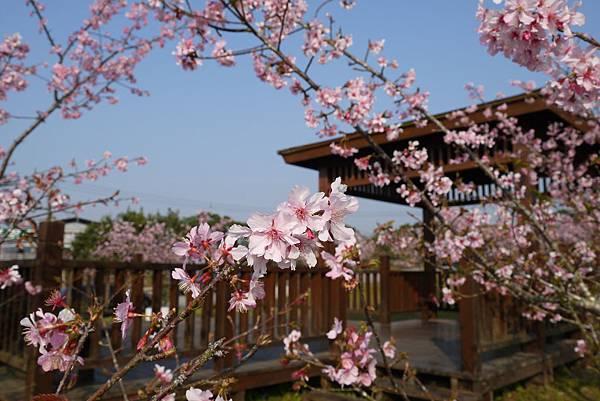 春節旅遊景點