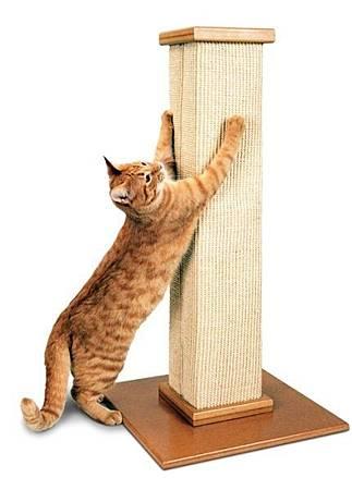 SMARTCAT貓抓柱