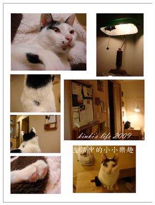 kinki's_life_20090001_-_3.jpg