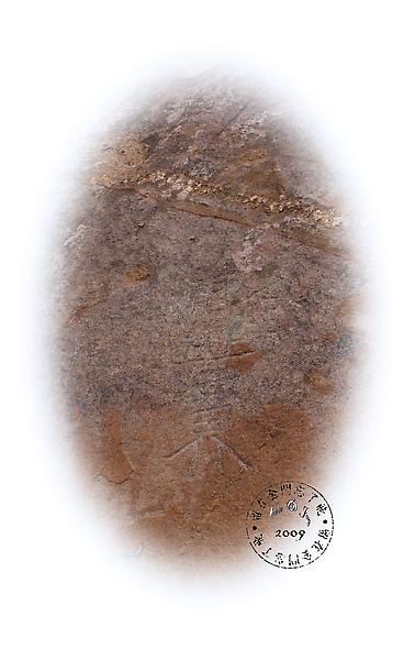 金浦黃界2.jpg