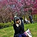 _DSC7946.JPG