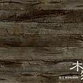 櫻王106木物新品電子報-01