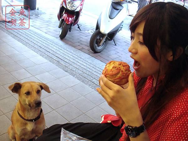 旗山 香蕉泡芙 狗狗很想吃?