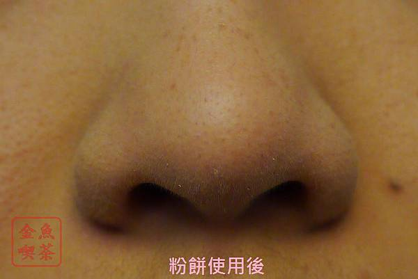 1028 傳明酸亮透美白粉蕊 使用後鼻子