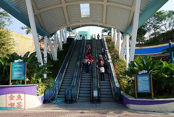 香港海洋公園門口的電扶梯