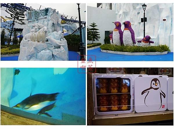 冰極天地-企鵝館及海獅海豹等動物