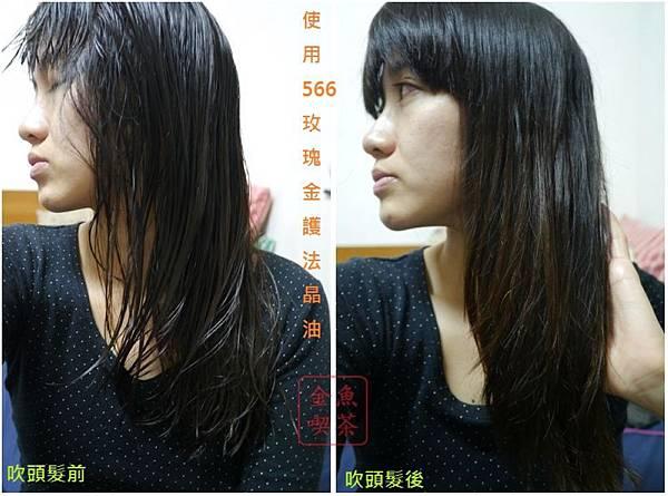 566玫瑰金護髮晶油 使用前後