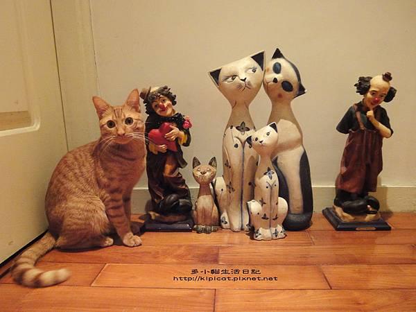 多小貓偽裝假貓(多小貓生活日記)