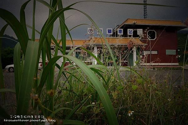 內獅車站 (3).jpg
