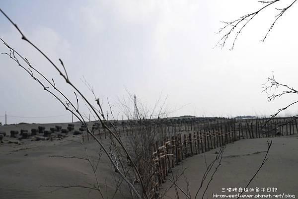 頂頭額汕 (18).jpg